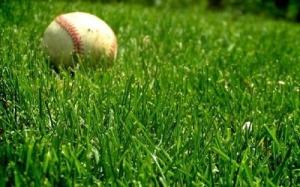 BaseballGrass